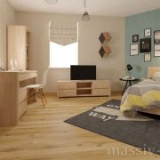 int_lausanne_bed900_2