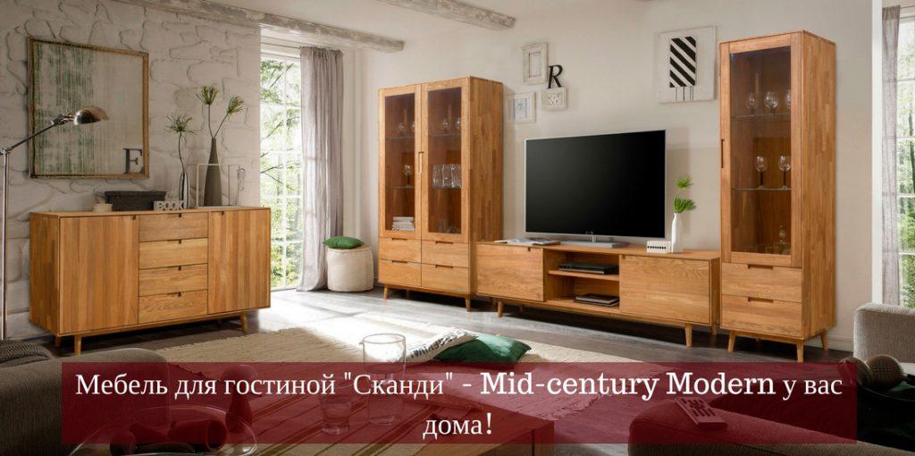 skandi-gostinaya-banner