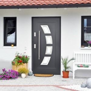 dveri-vhodnye-ulichnye